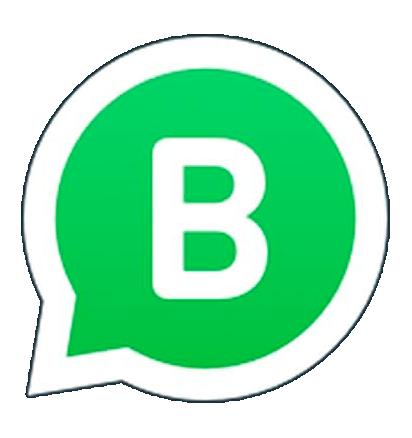 whatsapp-business-raia1-piscinas bh